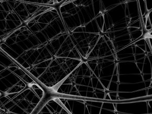 1043923_network_neurons_2